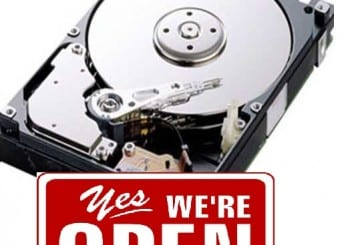 DLS data backup and recovery